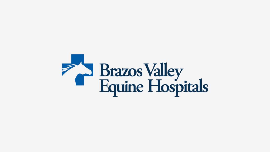 Brazos-Brand-Logo-1